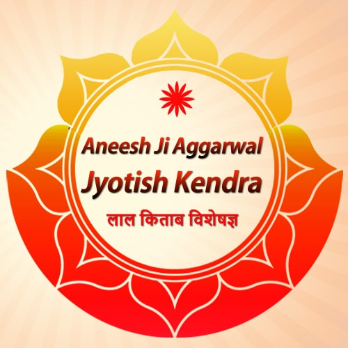 Aneesh Ji Jyotish Kendra